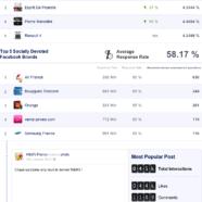 Statistiques Pages Facebook France Janvier 2013